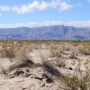 Desierto-CanondeGuadalupe10.JPG