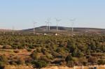 Tecate Desert